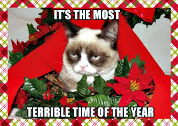 Grumpy Cat's Worst Christmas Ever filmed in Coquitlam Centre this week dressed for Christmas. Today is a Santa Claus scene with the permanently frowning ...